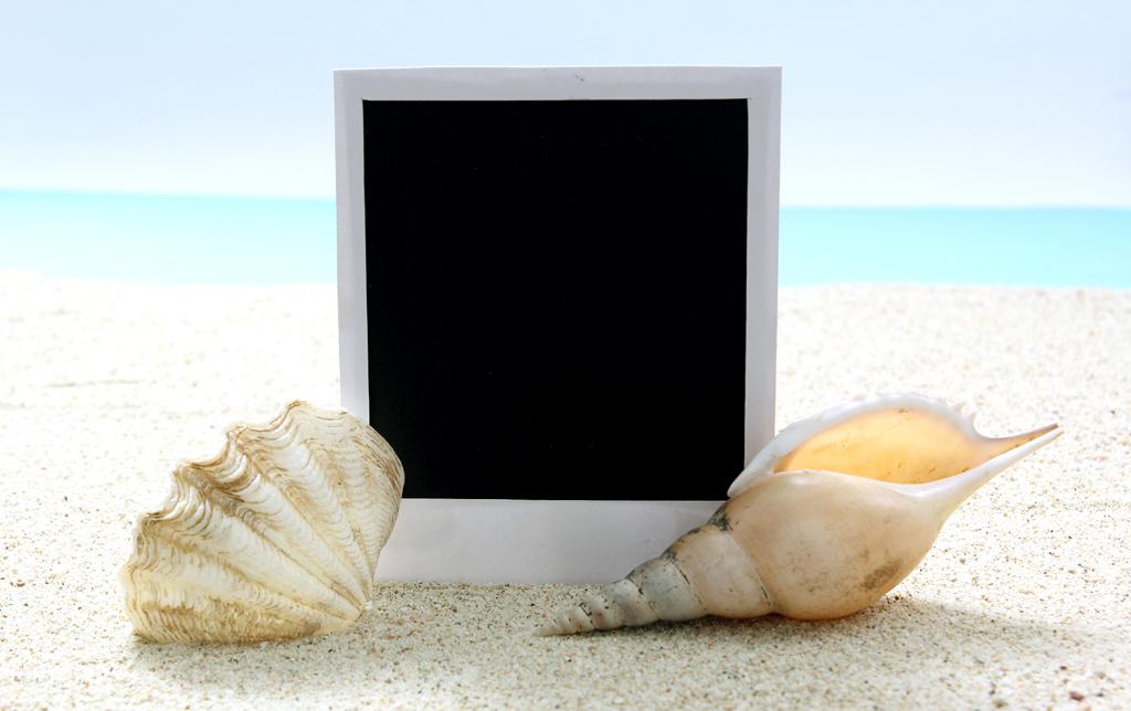 tablet_seashell